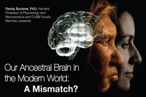 Our Ancestral Brain in the Modern World: A Mismatch?