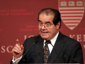 Scalia 1-1329787