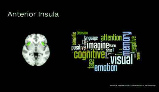 Anterior Insula has many functions